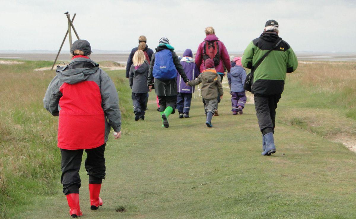 Wattwanderung Wangerooge: Familien auf dem Weg durch die Salzwiese ins Watt