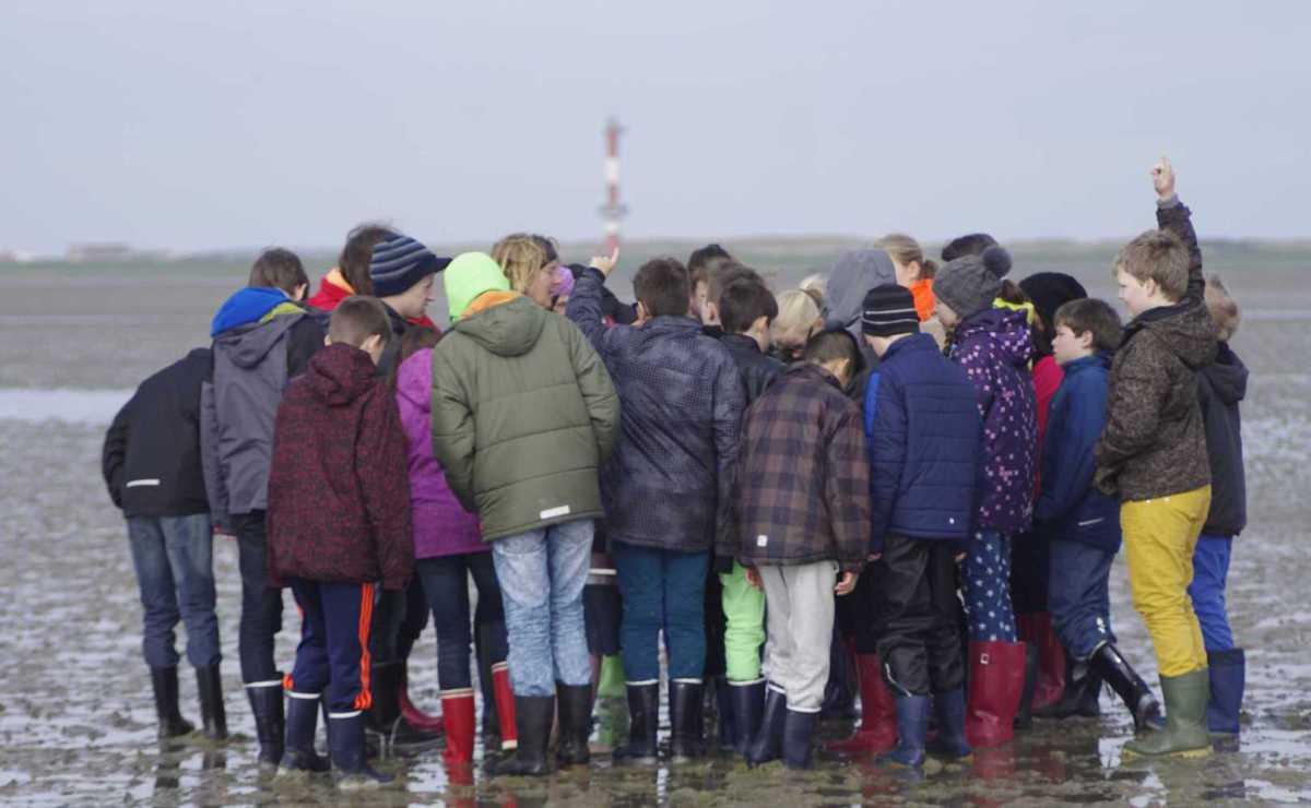 Klassenfahrt nach Wangerooge: Schülerinnen und Schüler versammeln sich interessiert um Wattführerin Petra Lösch